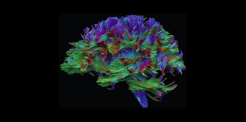 medical imaging physics hendee full pdf